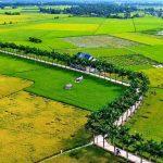 Nông thôn là gì? Chương trình mục tiêu quốc gia về xây dựng nông thôn mới